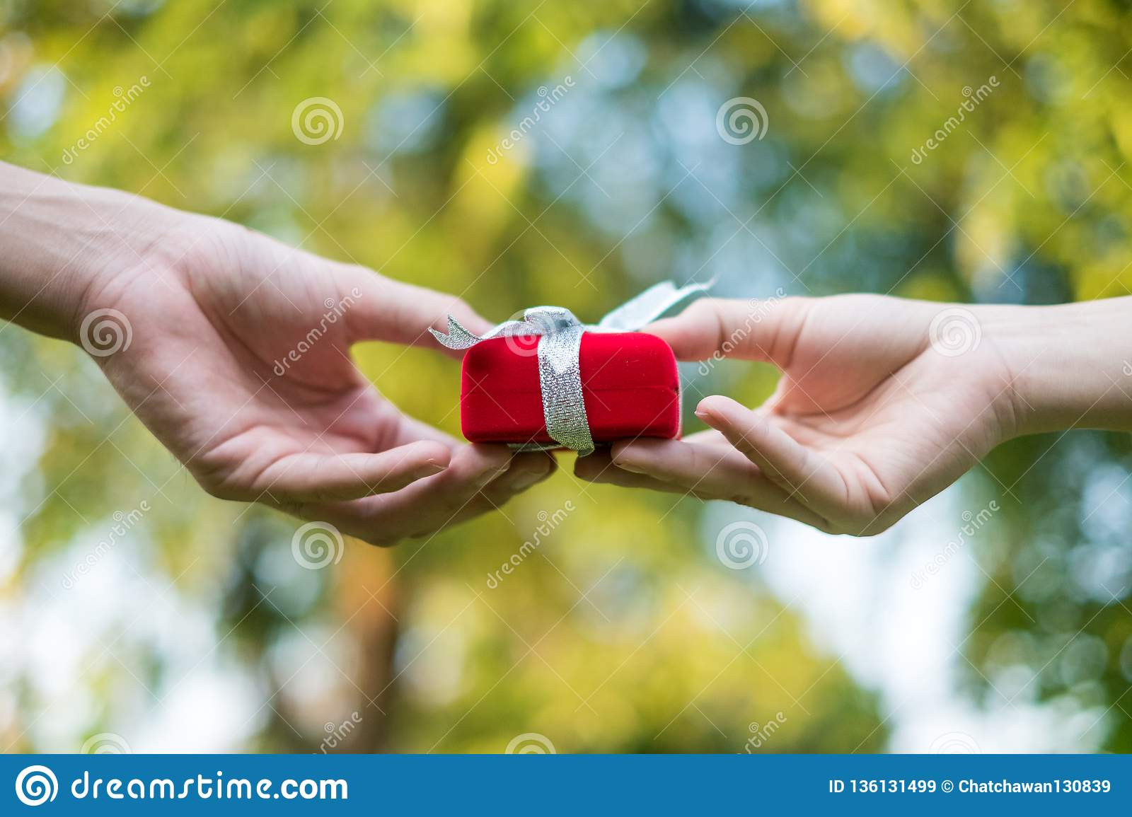 Giving red gift box in with hands On special days for special person, on grass background. Wedding ring box