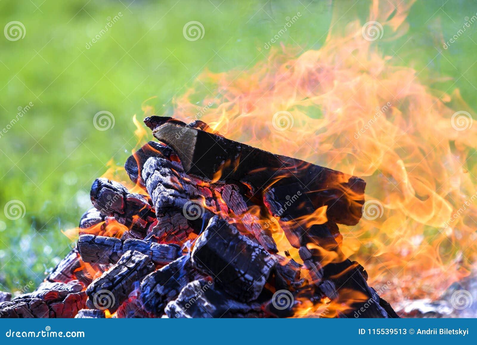 Glödande brasa på naturen Brinnande träplankor utanför på summ