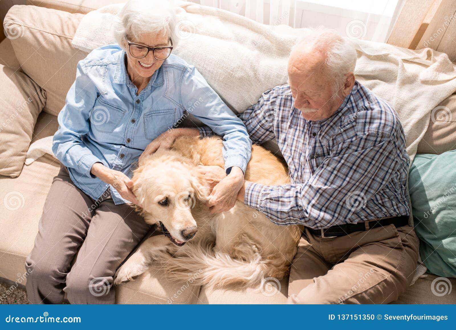 Glückliche ältere Paare mit Haustier