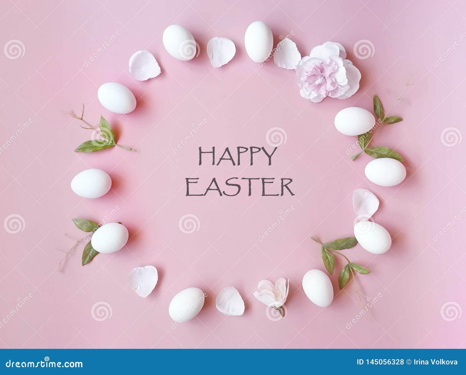 Glückliche Easter Eggs entspringen Feiertag mit dem Frühlingsblumenblumenblatt und gelber Kopienraum auf rosa Hintergrundkonzep