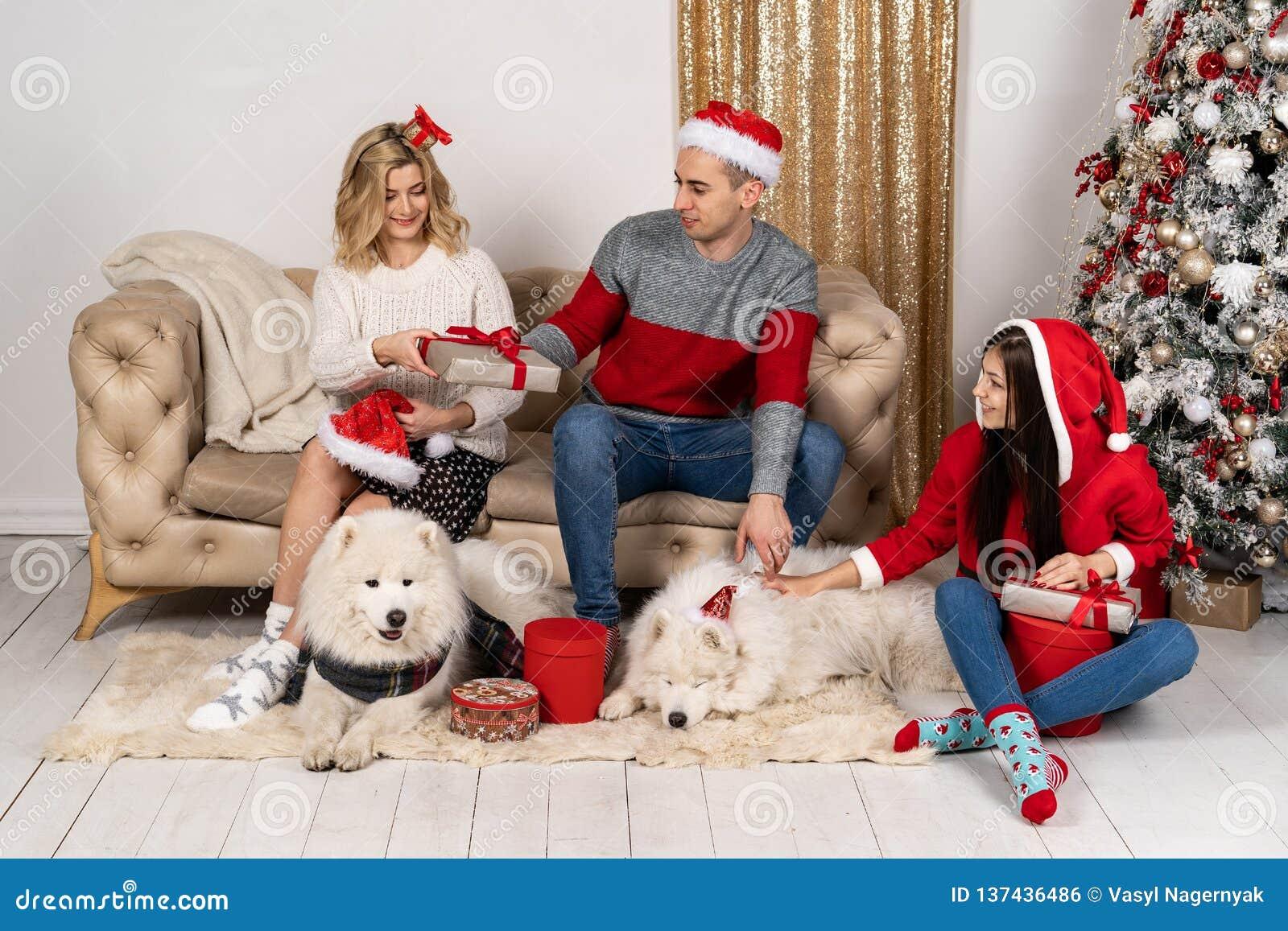 Glückliche Familie in den stilvollen Strickjacken und in den netten lustigen Hunden am Weihnachtsbaum mit ligths