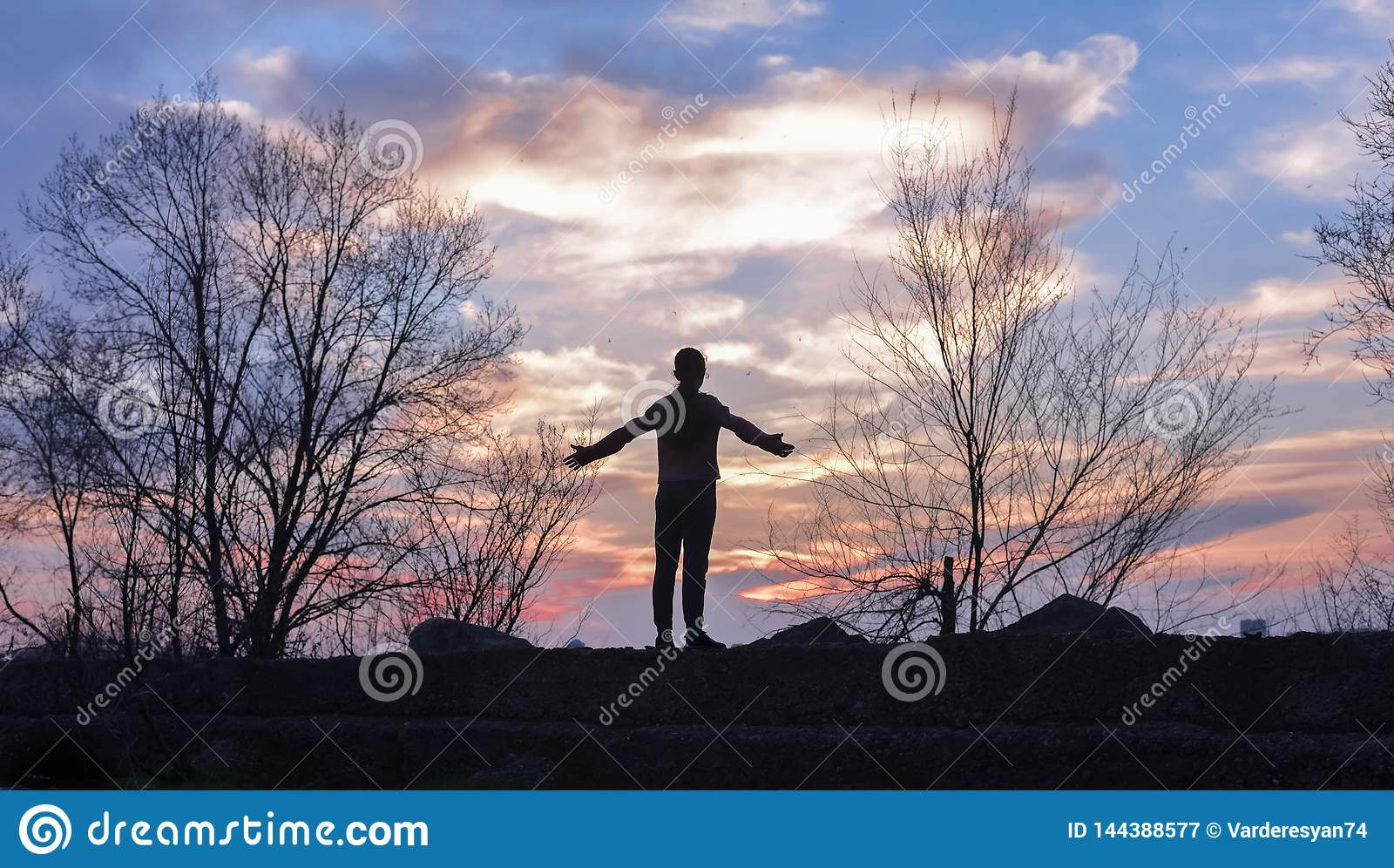 Glückliche feiernde gewinnende Erfolgsfrau bei Sonnenuntergang