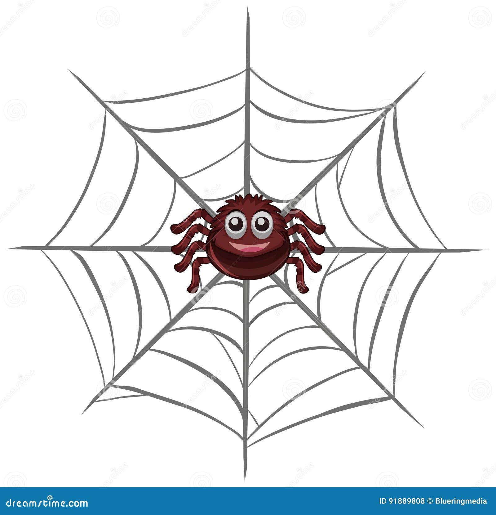 Glückliche Spinne im Netz