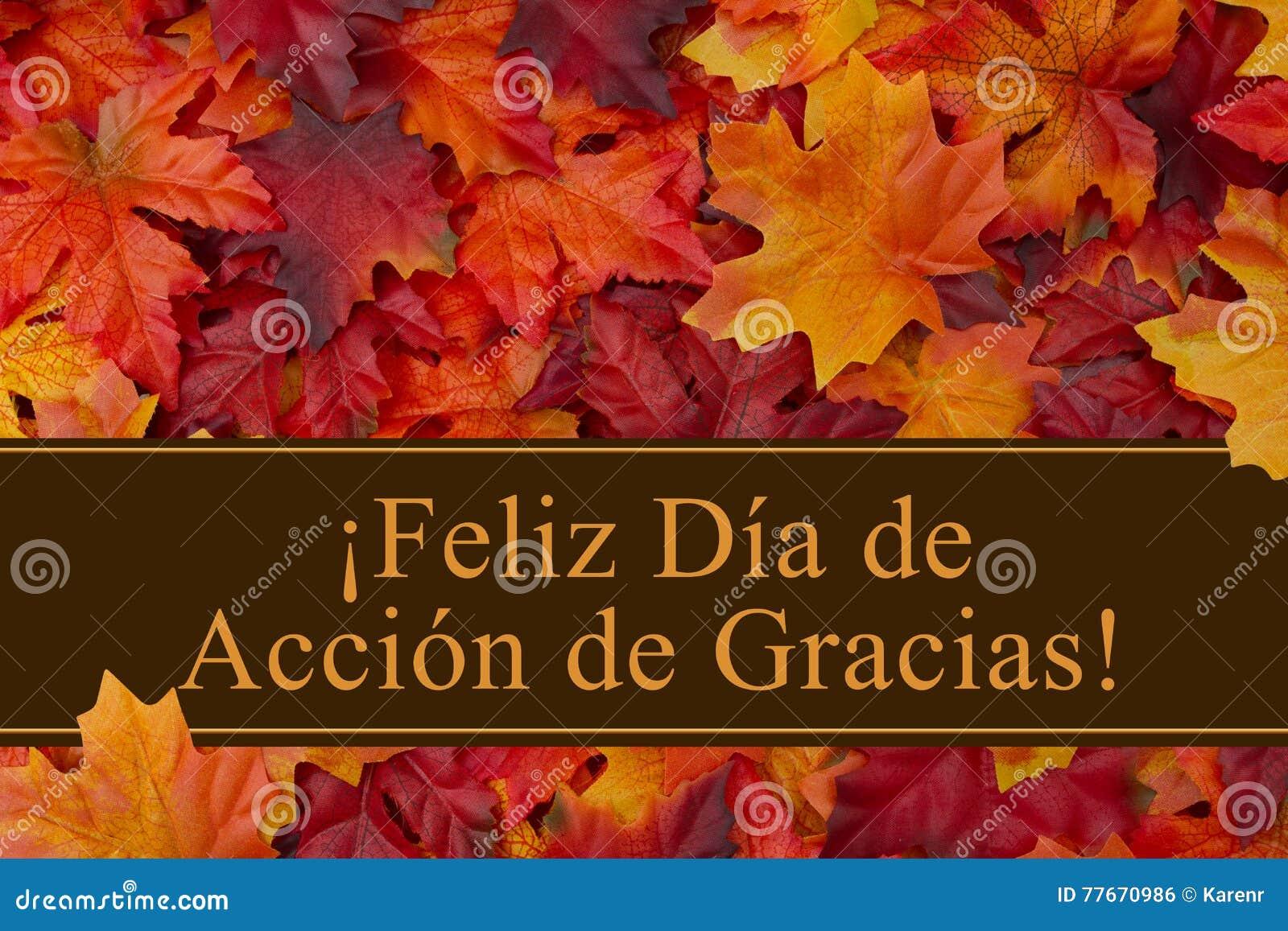 Glücklicher Danksagungs-Gruß auf spanisch