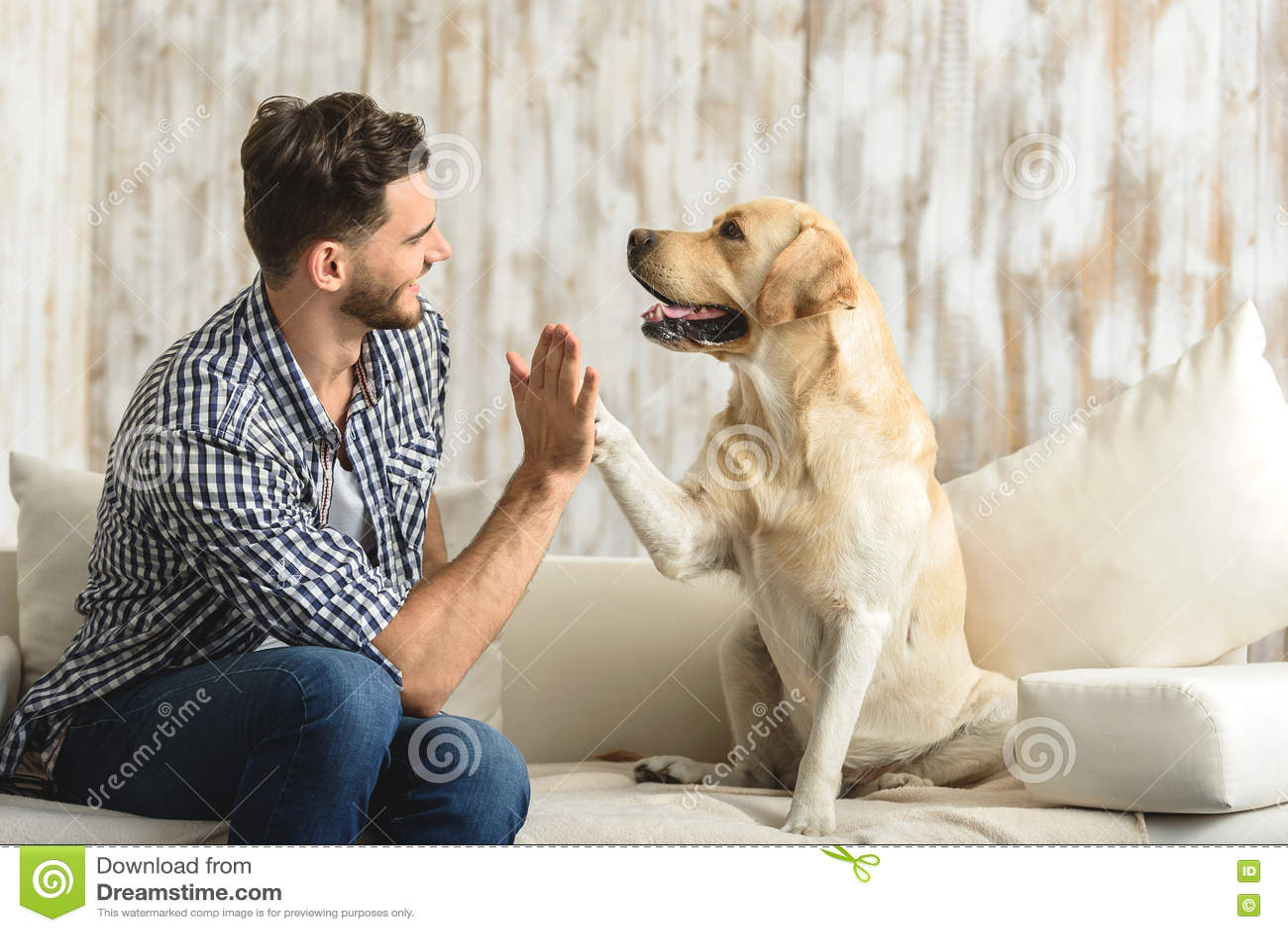 Glücklicher Kerl, der auf einem Sofa sitzt und Hund betrachtet