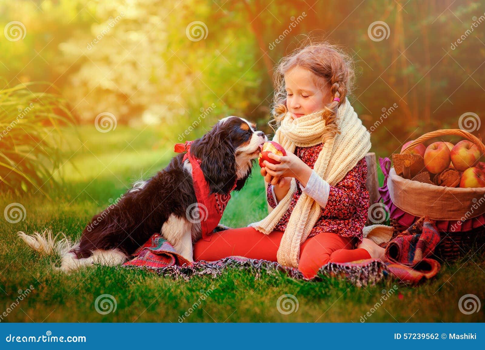 Glückliches Kindermädchen, das mit ihrem Hund spielt und ihm Apfel im sonnigen Herbstgarten gibt