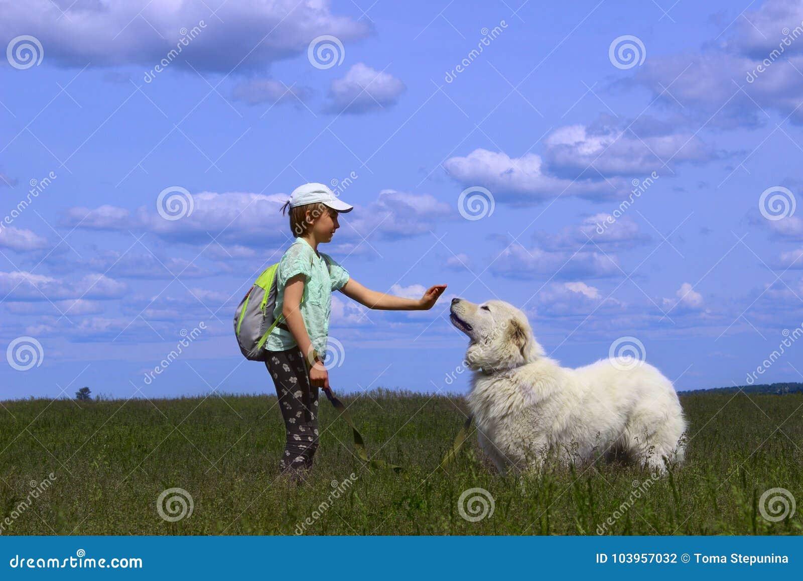 Glückliches Mädchen, das mit ihrem Schoßhund spielt