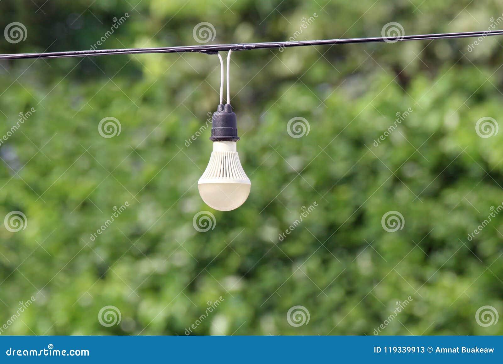 Glühlampe, die an der elektrischen Drahtlinie Kabel der Schnur mit grünem Naturbaum bokeh Beleuchtungshintergrund hängt