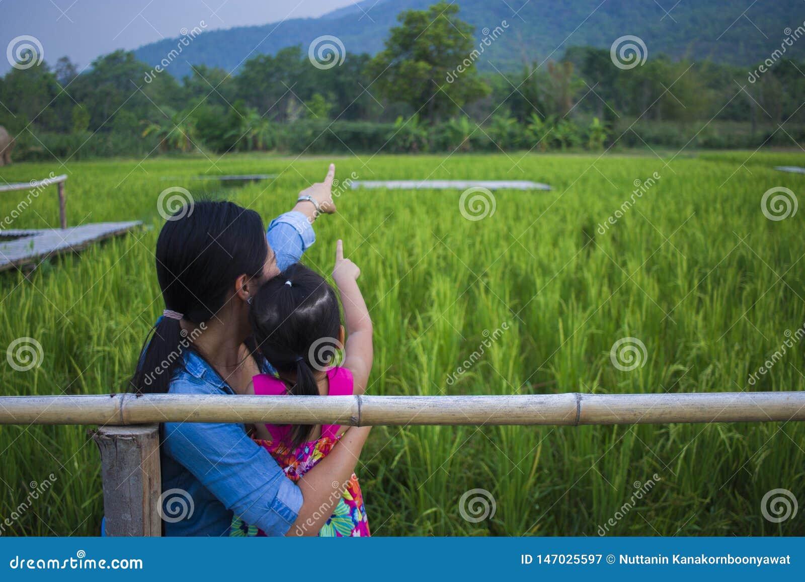 Gl?ckliche Mutter und ihr Kinderspiel, die drau?en Spa? hat und auf etwas auf dem gr?nen Reisgebiet zeigt