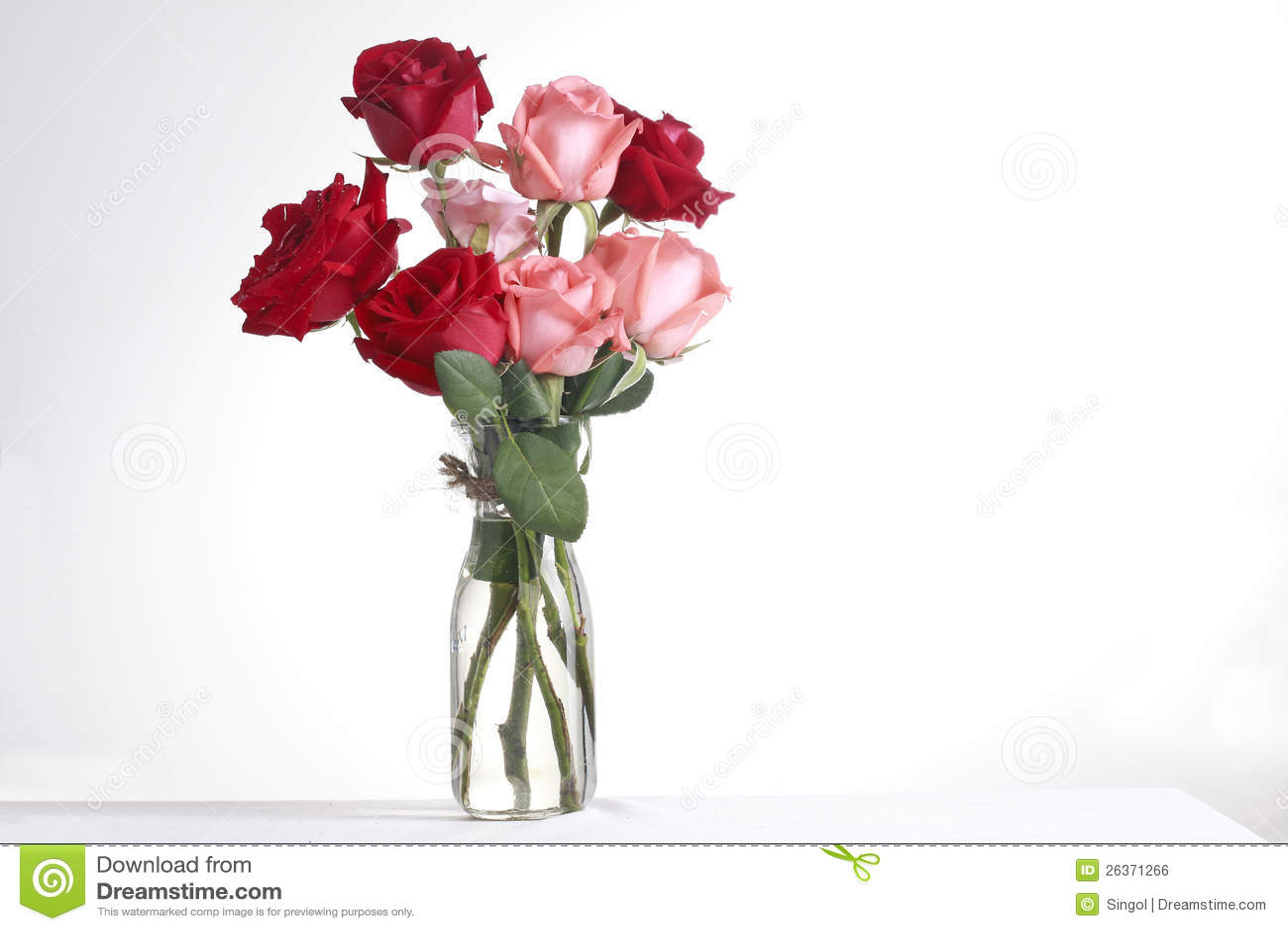 Glace et rose1
