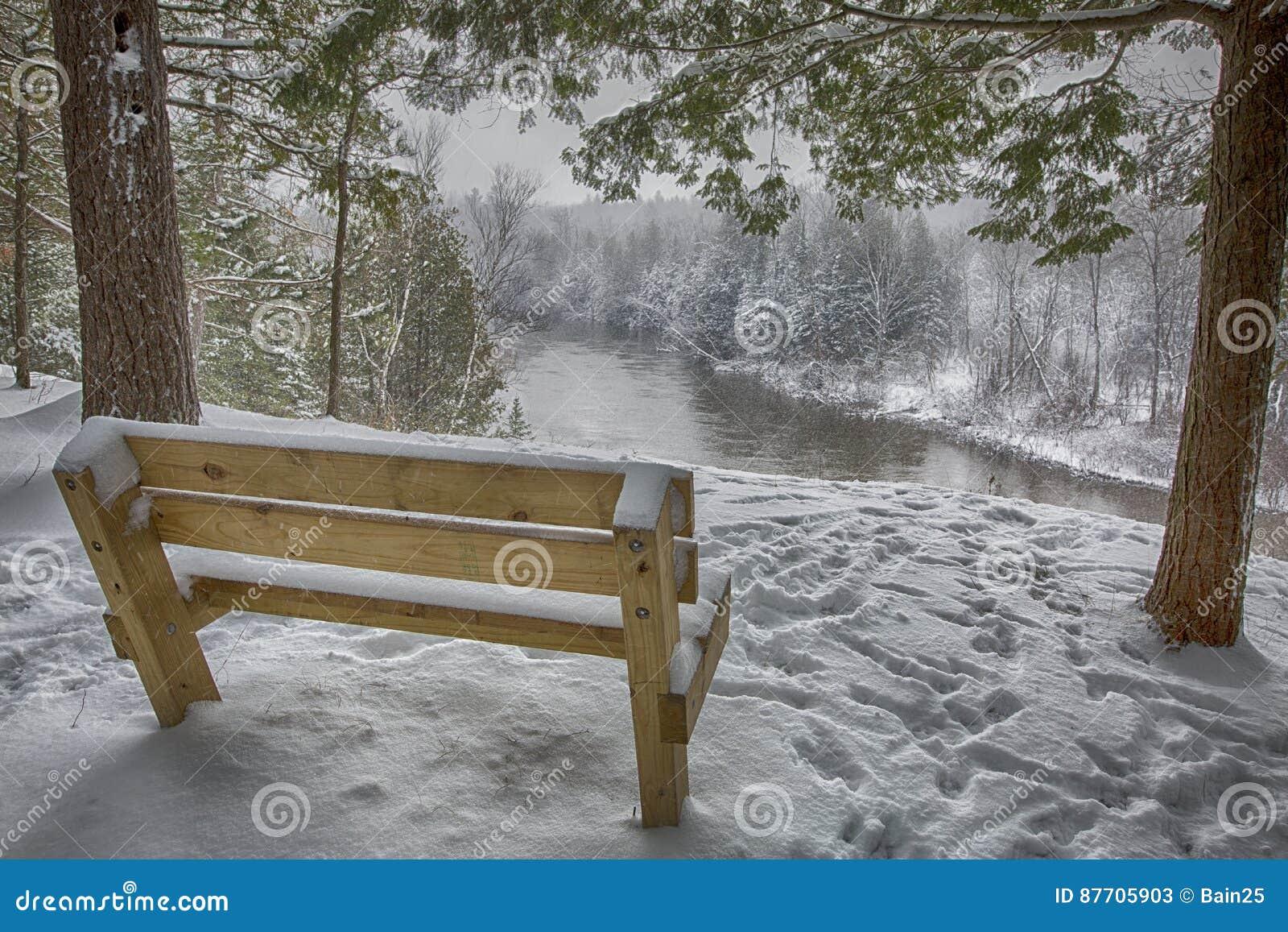 Glace, neige, arbre, scène de rivière d hiver