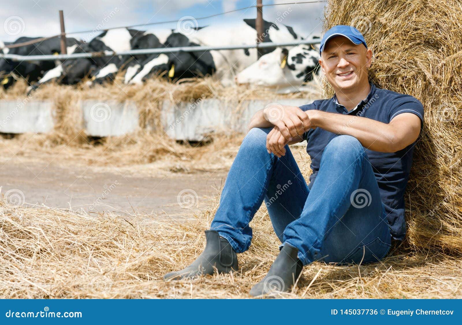 Glad bonde på en lantgård bland kor som sitter på jordning
