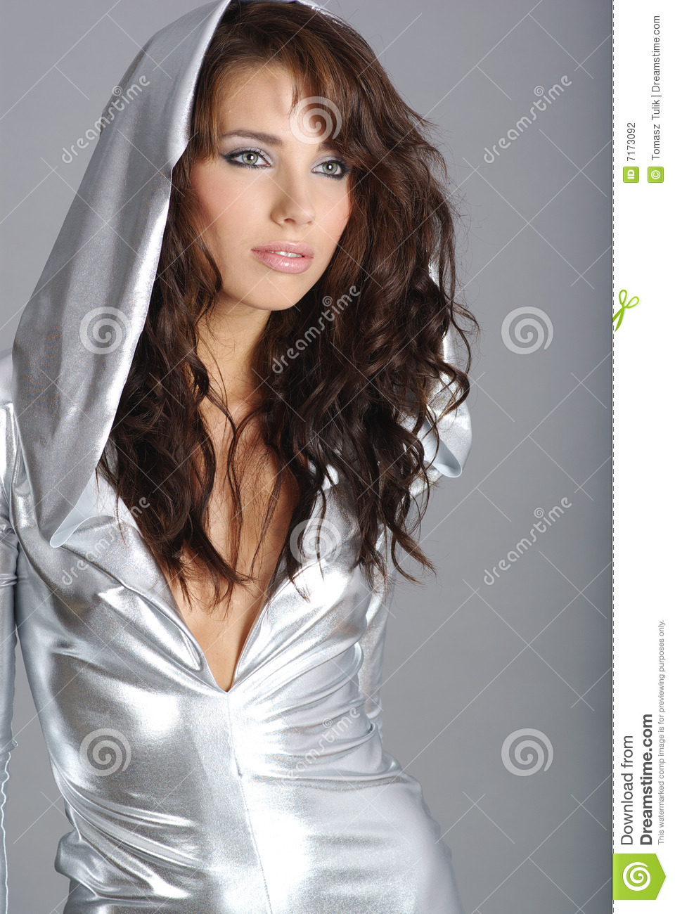 Glamour And Fashion Girl Stock Photography Image 7173092