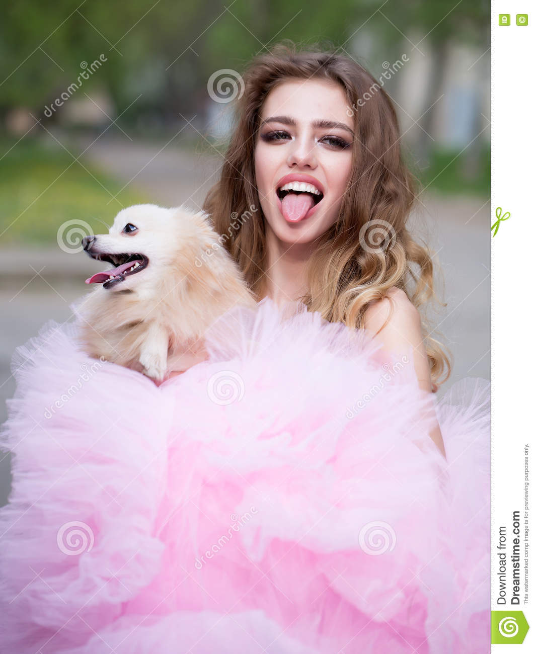 Glamour Woman With Dog Stock Photo Image 70808303