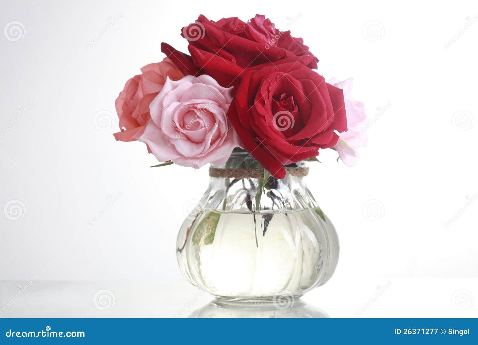 Glas und rose2