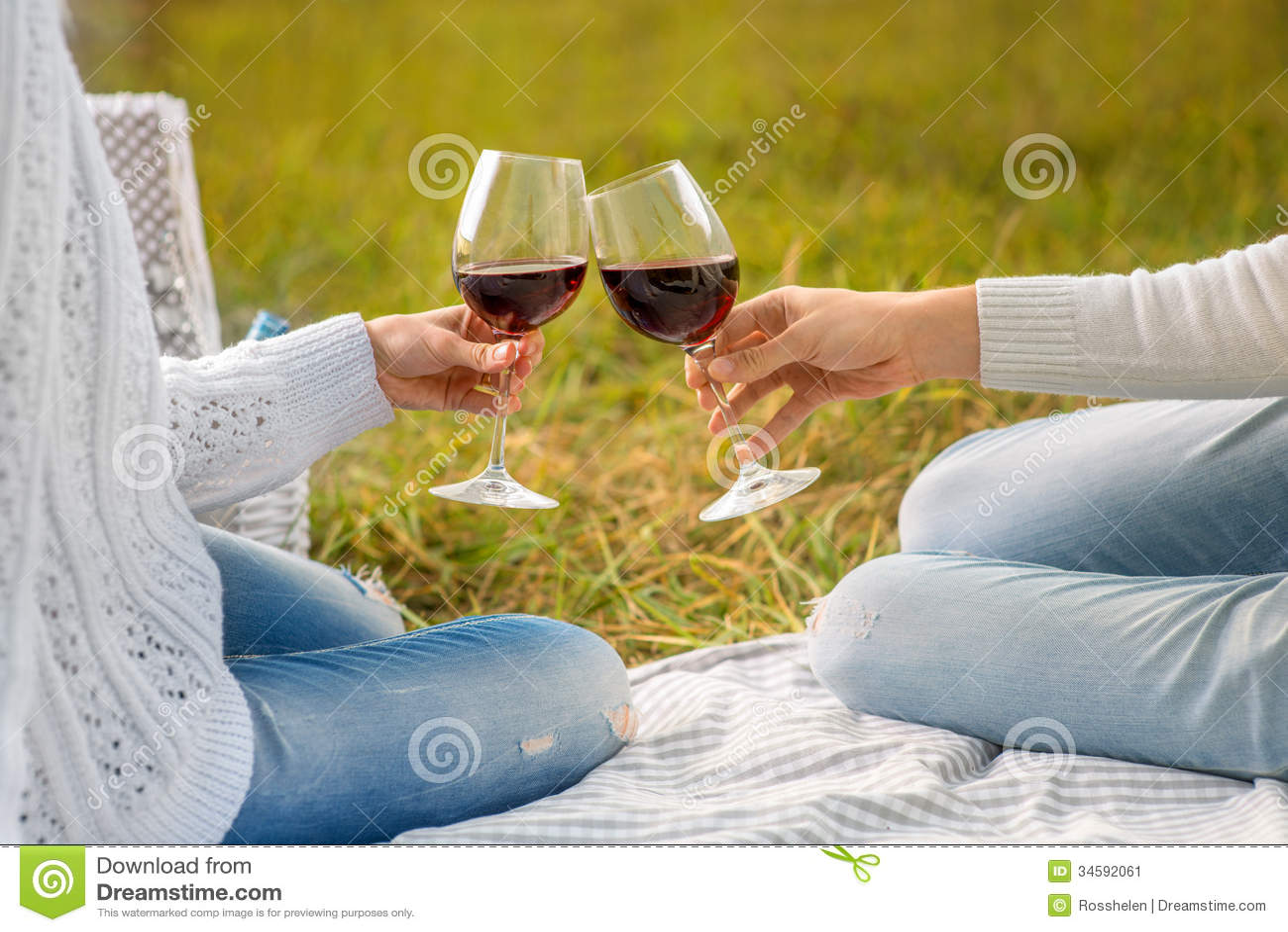 Glases que tintinean con el vino en una comida campestre