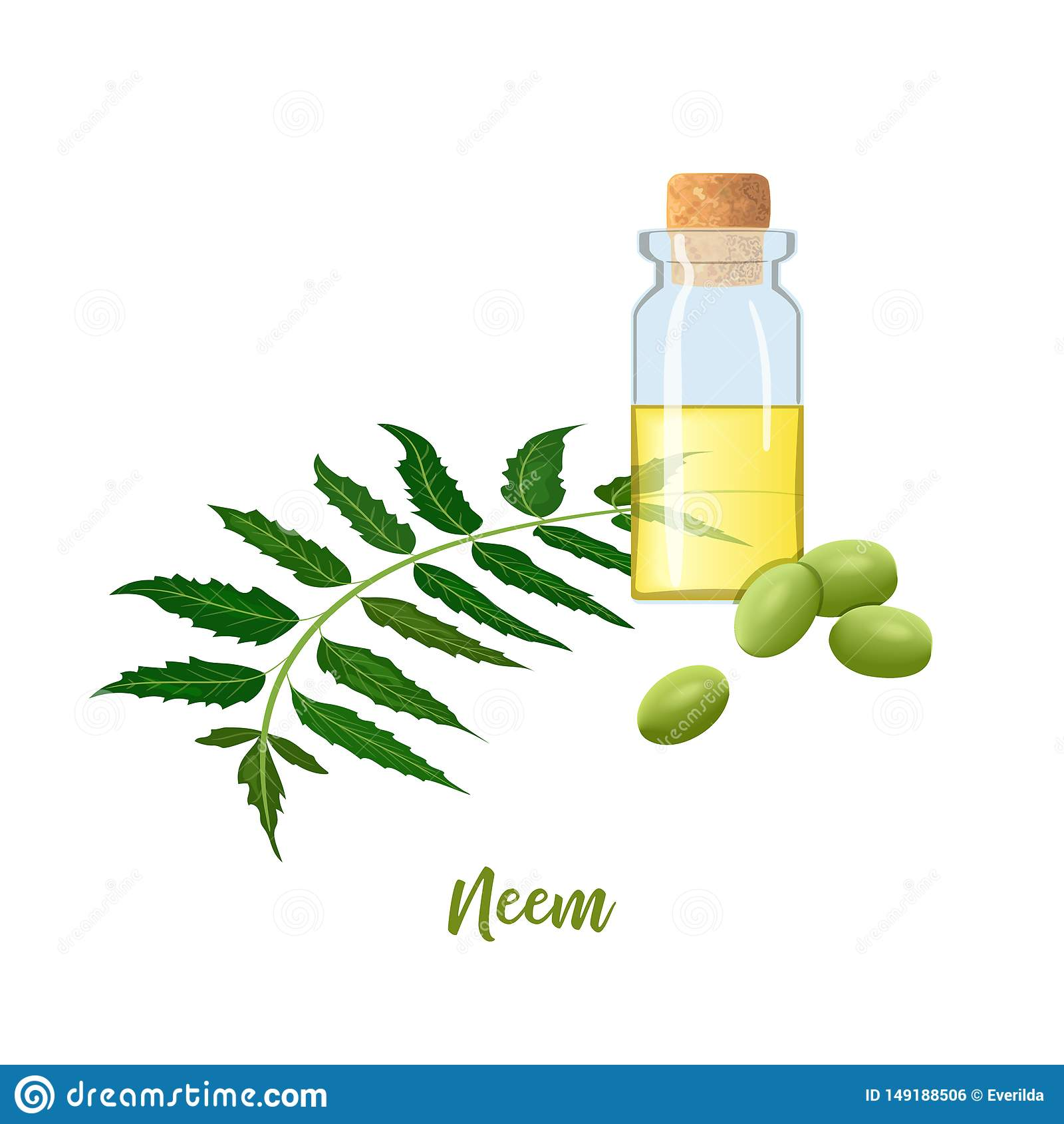 Glasflaska med coren, Neem olja, bladfilialen, blommor och fr?skidor r vial Oilplant f?r medicin, sk?nhetsmedel