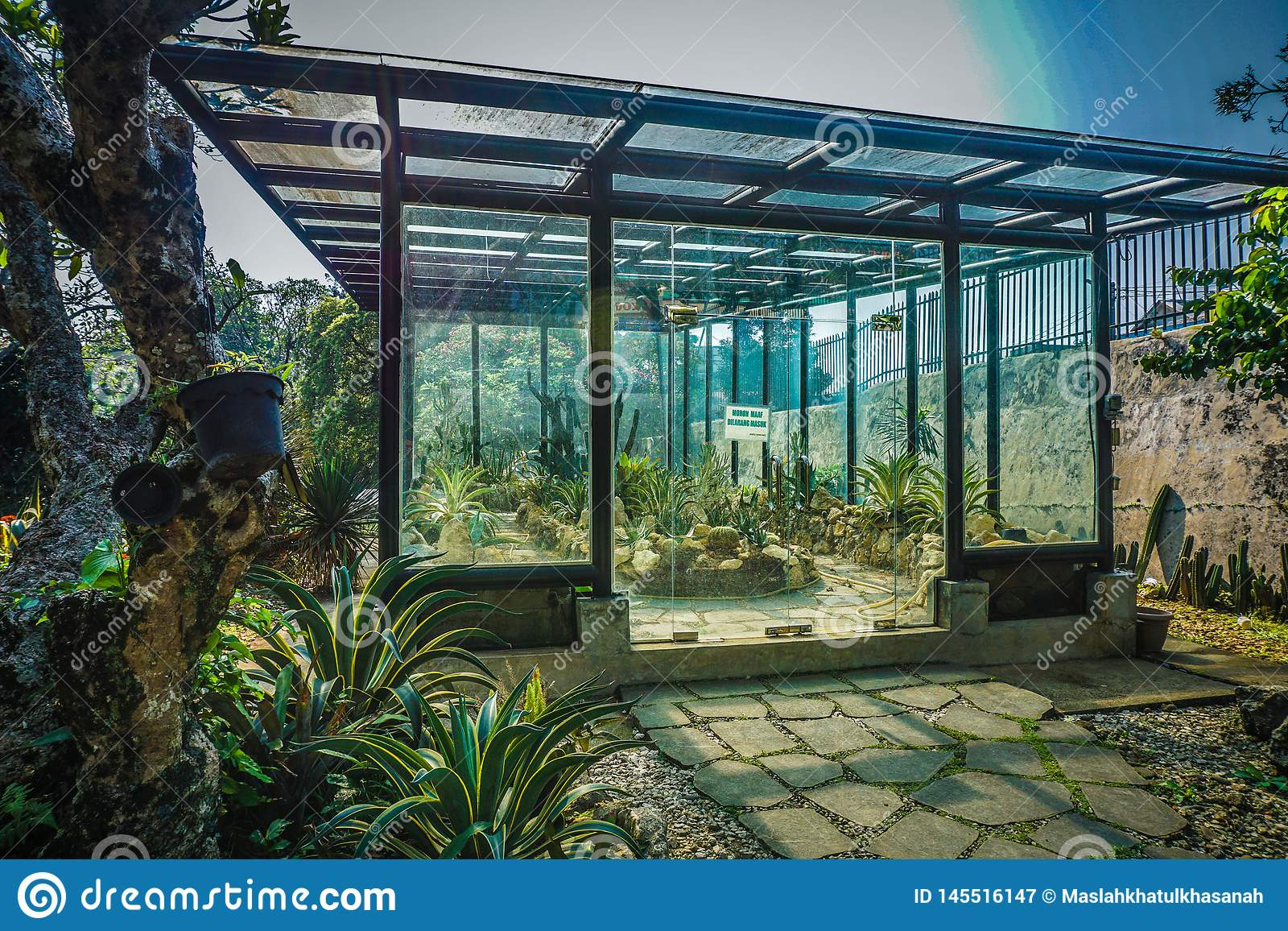 Glashuis om cactus te kweken om temperatuur in bogorpark warm te houden - foto
