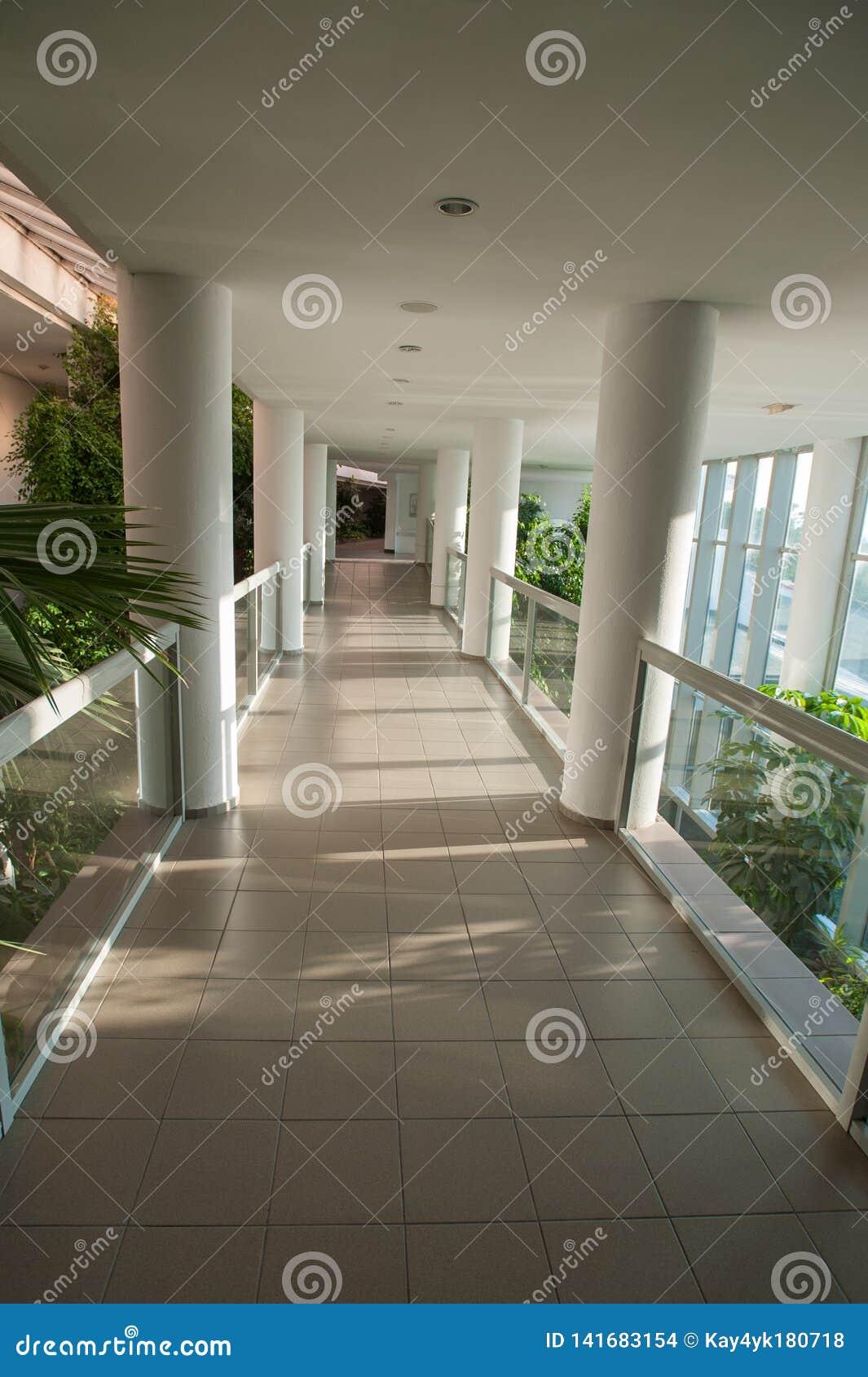 Glasig-glänzender Korridor, Durchgang durch das Gewächshaus, sonniger Korridor