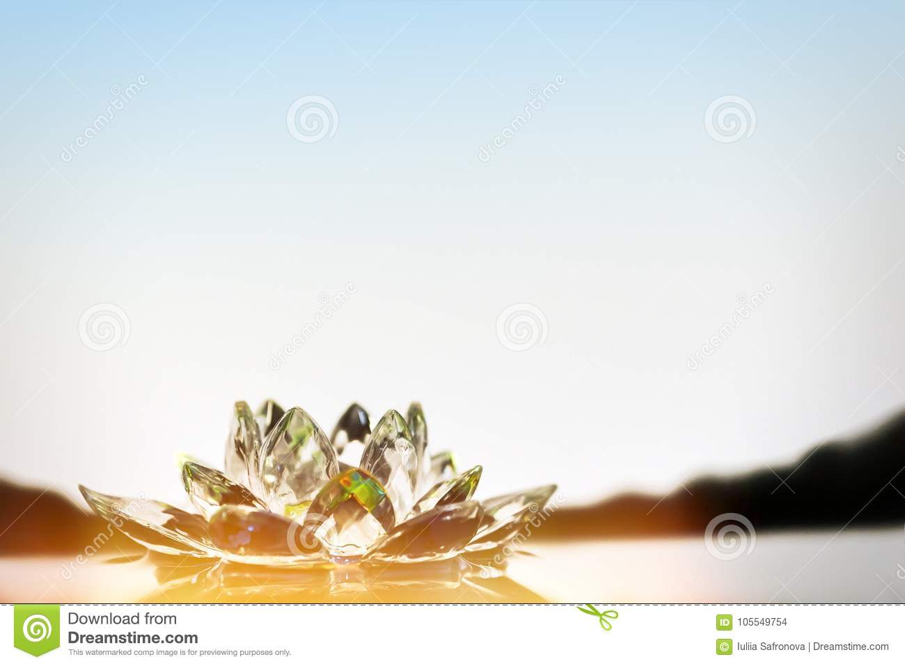The Glass Lotus Flower Lies In The Water The Rays Of The Sun Sh