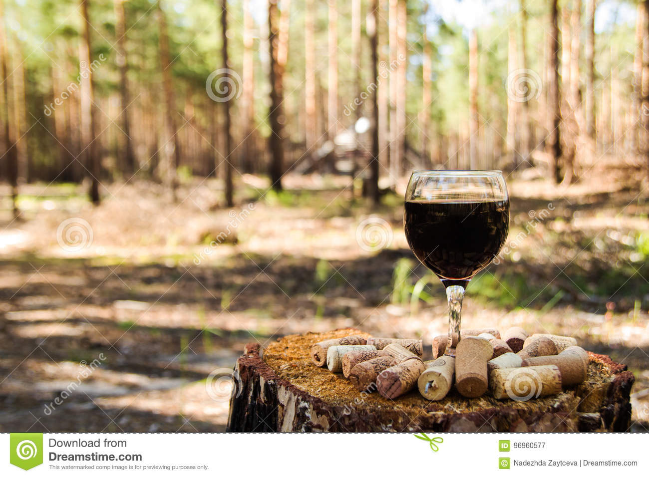 A glass with a red wine and wine corks on a stump in a summer forest.