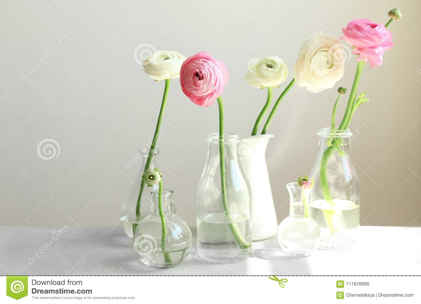 Glass vases with beautiful fresh ranunculus flowers stock image download glass vases with beautiful fresh ranunculus flowers stock image image of natural garden izmirmasajfo