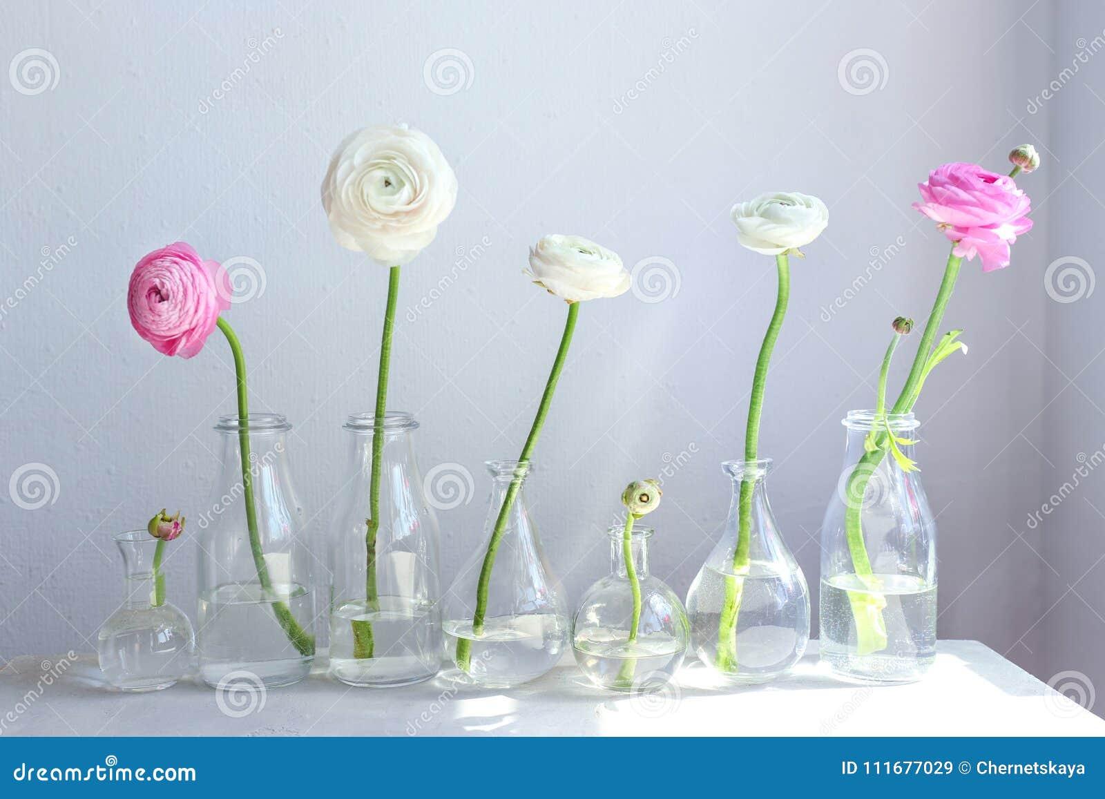 Glass vases with beautiful fresh ranunculus flowers stock image glass vases with beautiful fresh ranunculus flowers izmirmasajfo