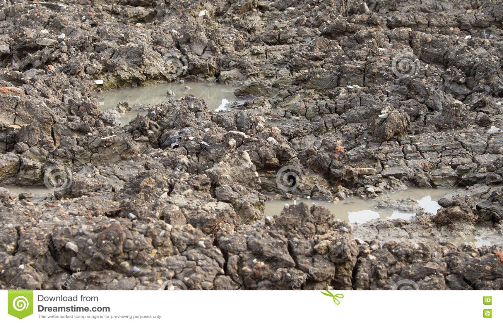 Glebowa tekstura