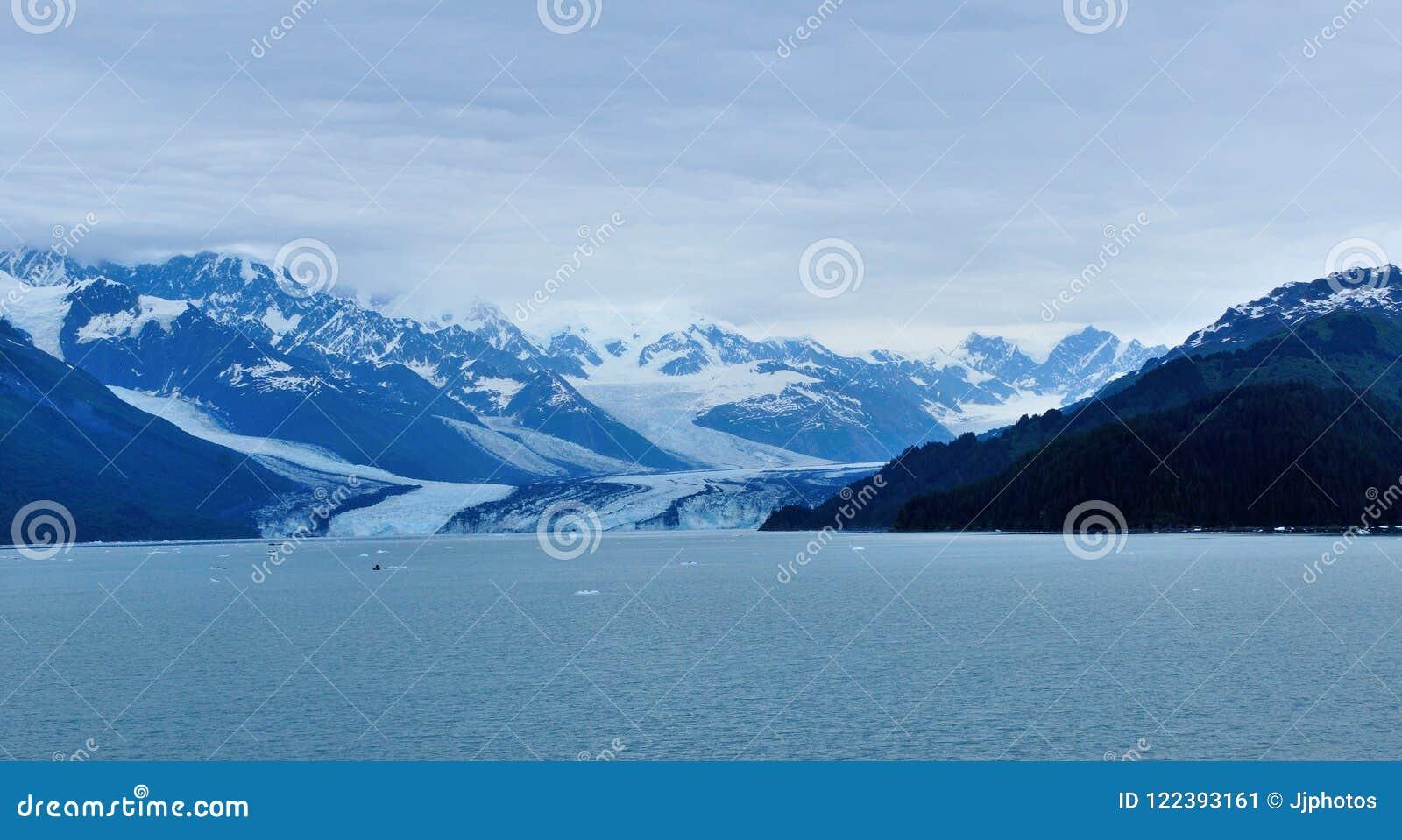Gletscher im College-Fjord in Alaska
