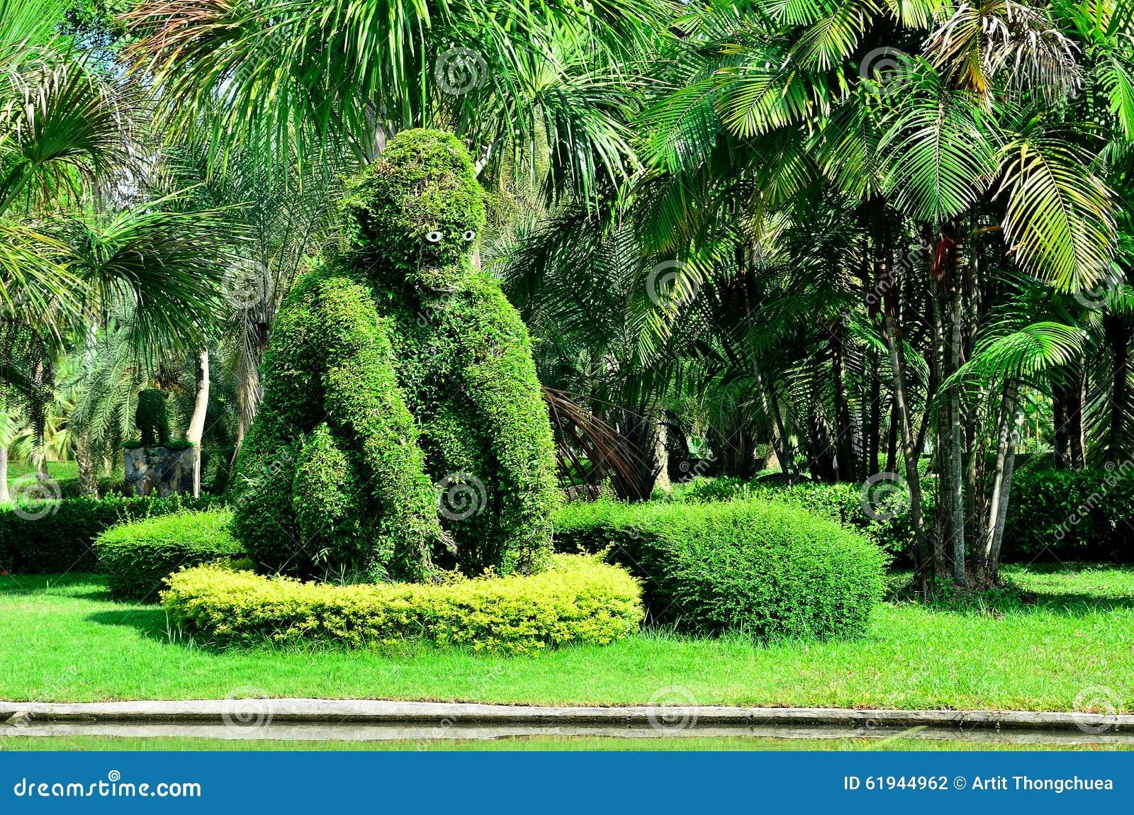 Alberi Nani Da Giardino gli alberi nani al giardino fotografia stock - immagine di