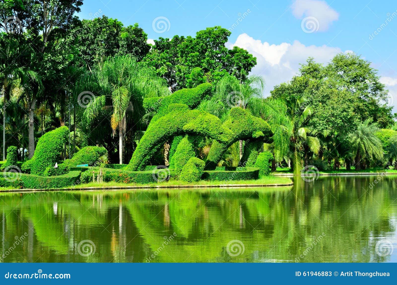 Alberi Nani Da Giardino gli alberi nani al giardino immagine stock - immagine di