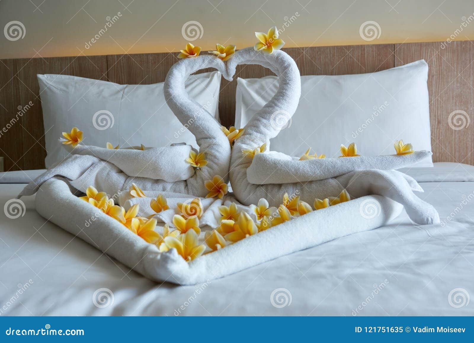 Come Piegare Gli Asciugamani In Albergo : Asciugamano piegato a cigno piegare asciugamano a cigno piegare