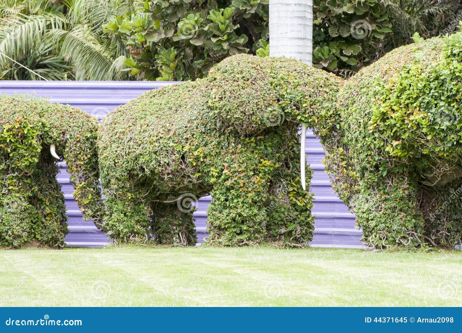 Gli elefanti hanno fatto il ‹del †del ‹del †con le piante