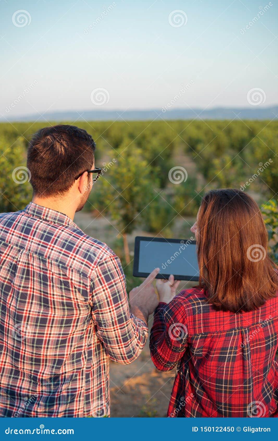 Glimlachende jonge mannelijke en vrouwelijke landbouwers of agronomen die fruitboomgaard inspecteren Mening van erachter
