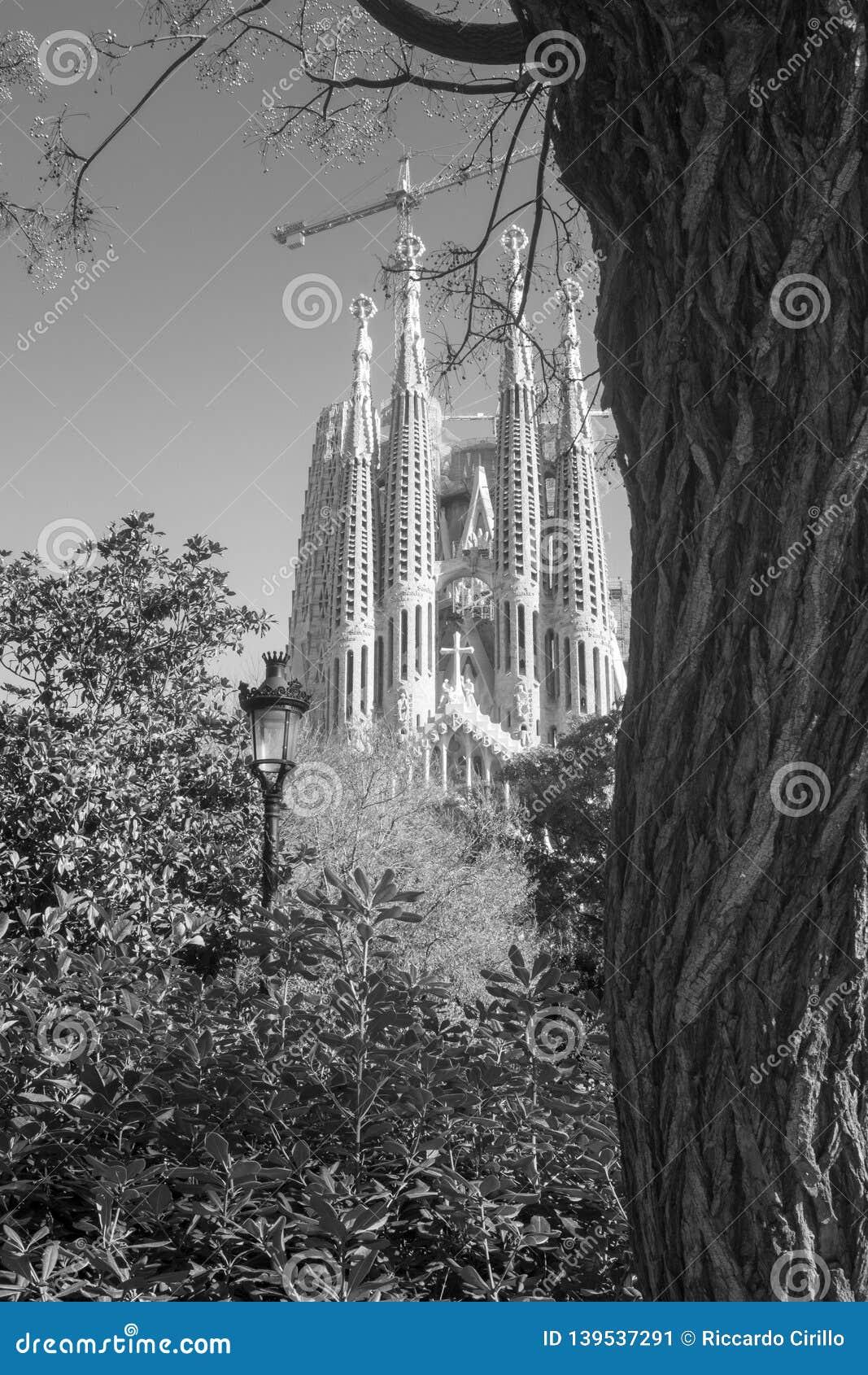 View of La Sagrada Familia from park. Barcelona, Spain
