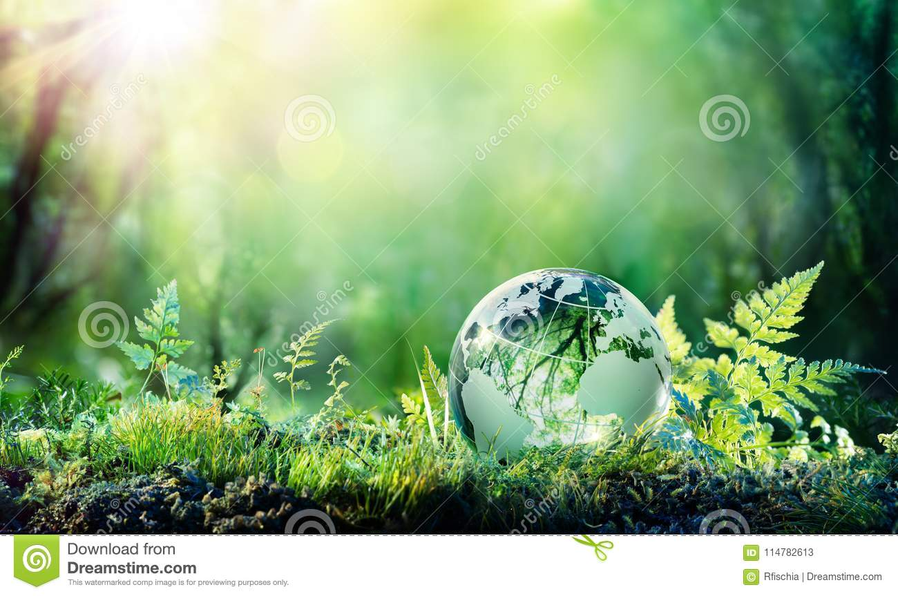 Globo ambiental do conceito em Moss In Forest -