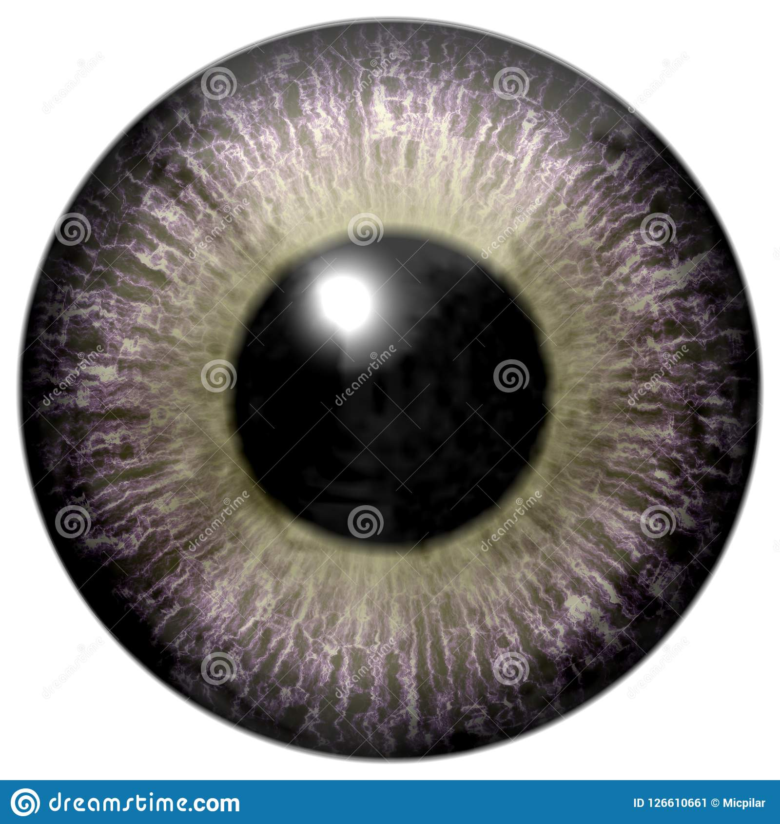 Globo del ojo gris interesante con verde claro