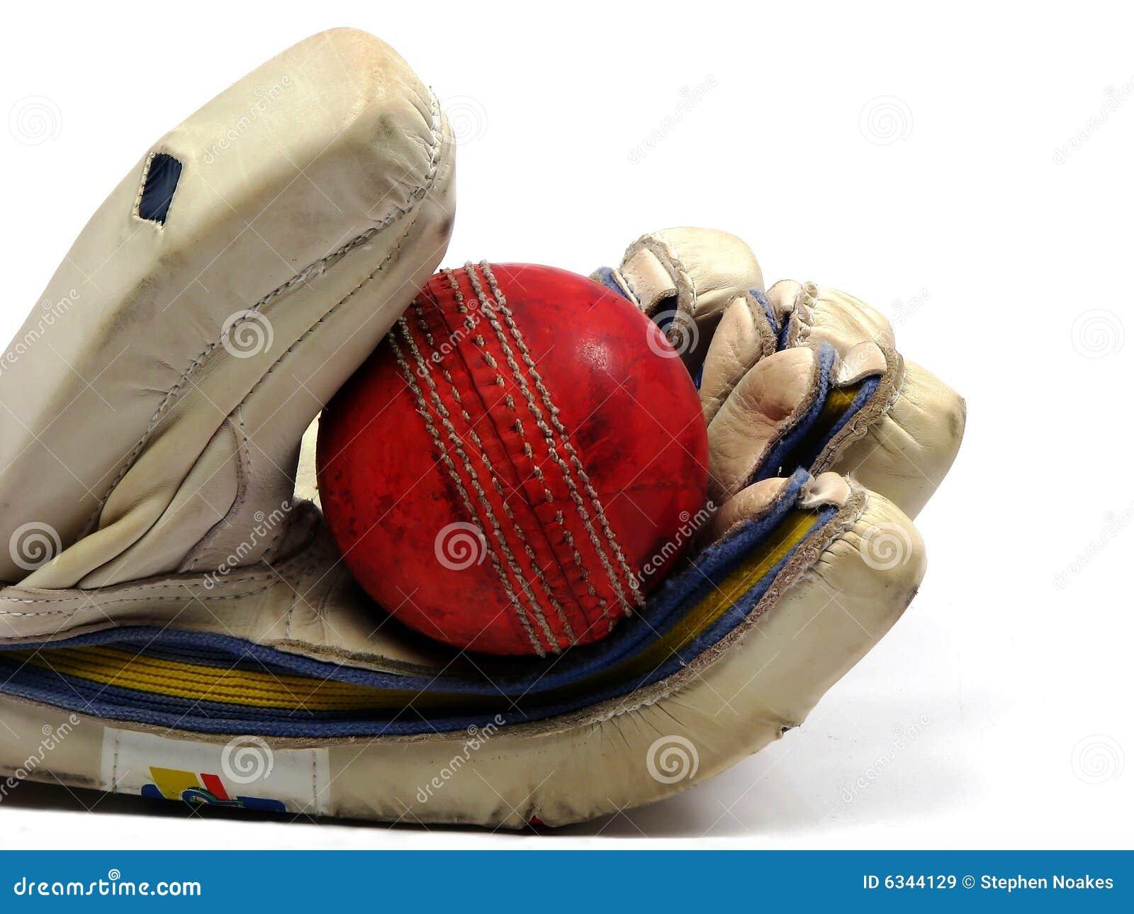 Glove holding cricket ball