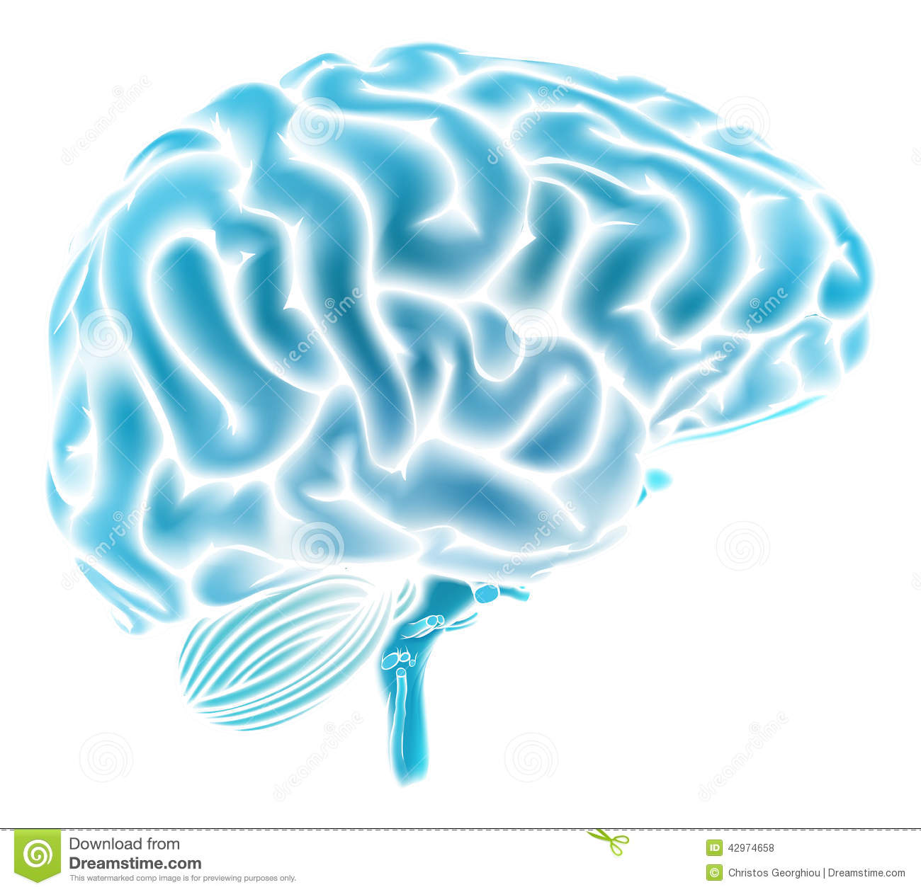 Brain black and white clipart