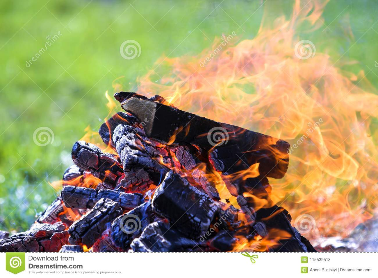 Glowing bonfire on nature. Burning wooden planks outside on summer day. Bright orange flames, light smoke and dark ashes on green