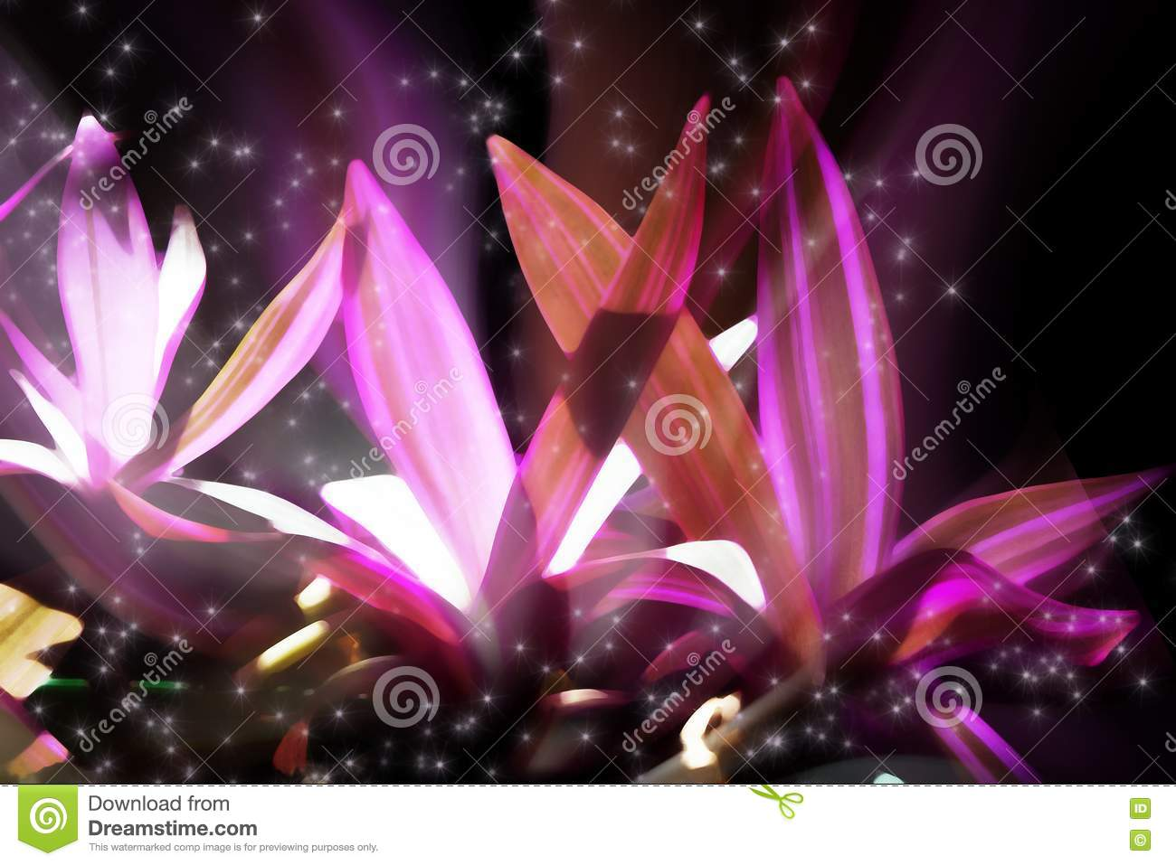 elements of glowing flowers - photo #46