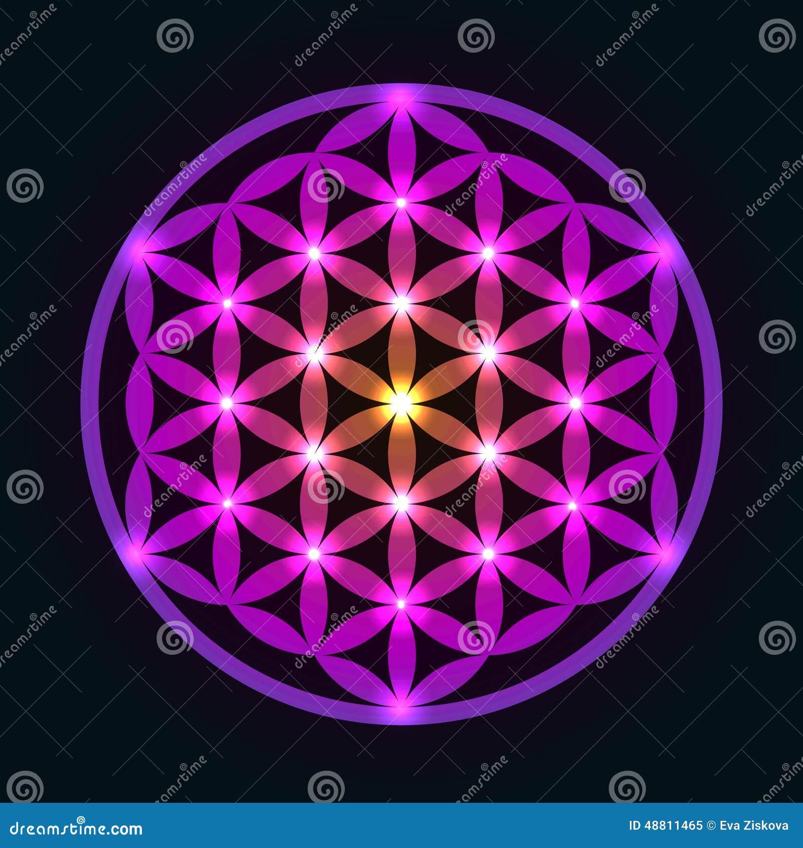 Glowing Geometrical Flower of Life