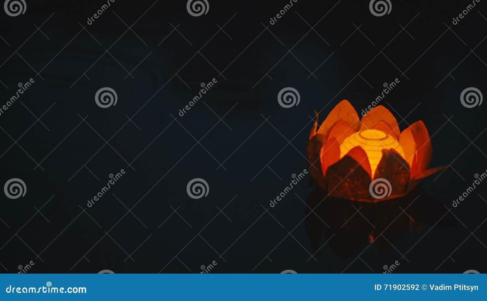 Flower Shaped Paper Lanterns Yelomdiffusion