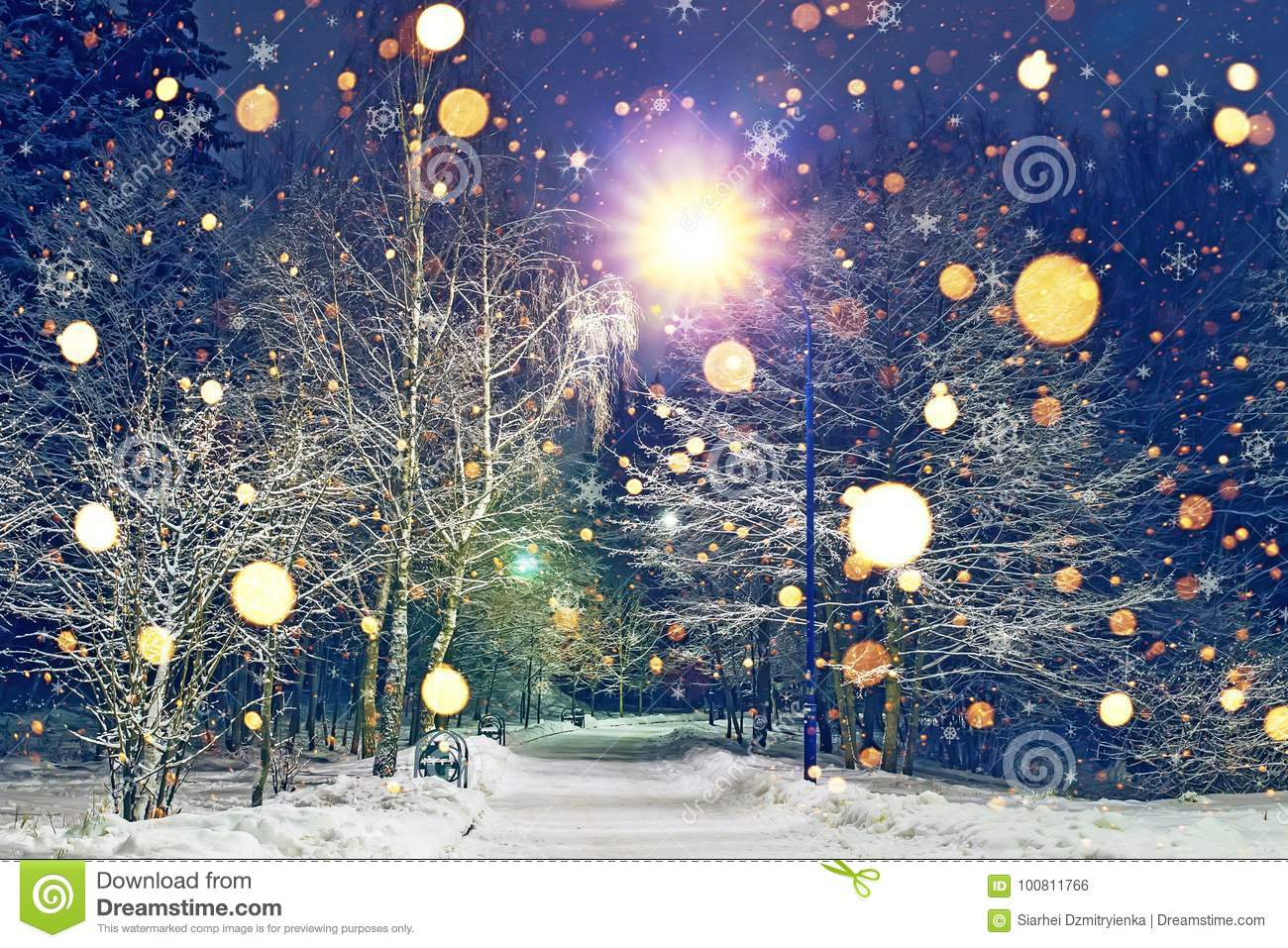 glowing snowflakes fall in winter night park theme of christmas and new year winter