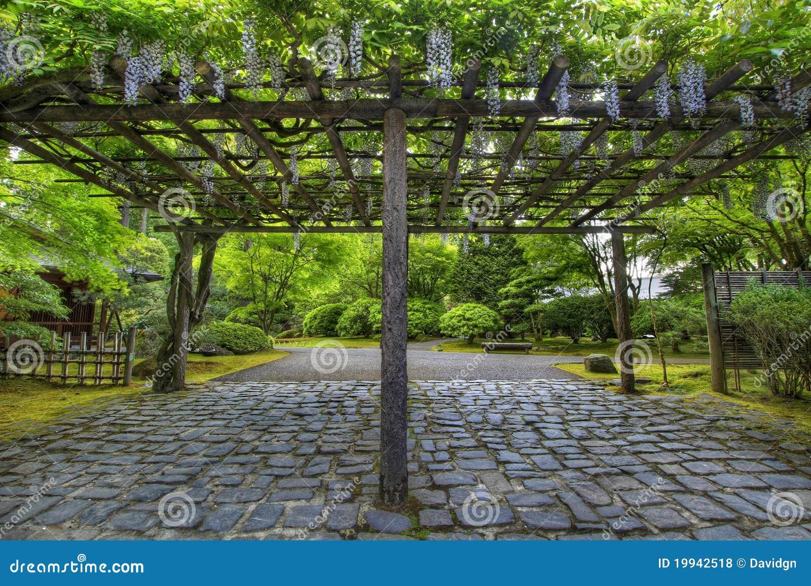 Glycines en fleur au chemin japonais de jardin de portland photos libres de droits image 19942518 - Pergola voor glycine ...
