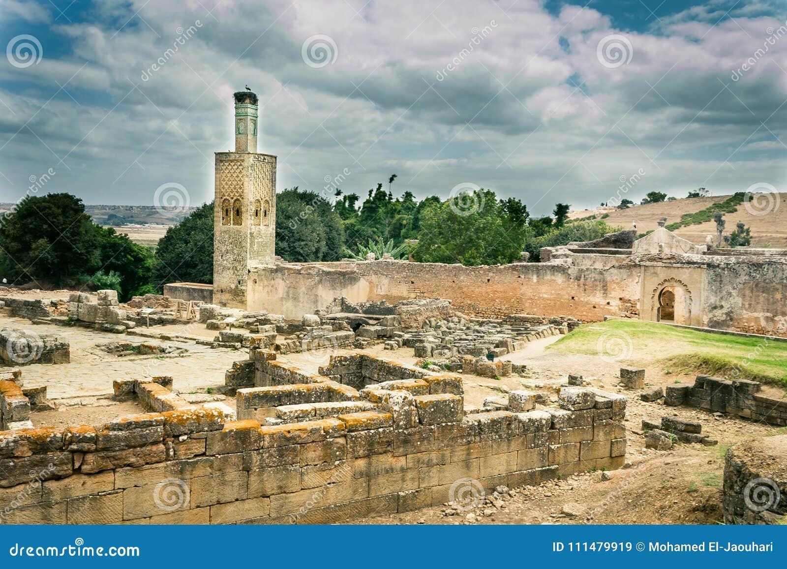 Gnić ruiny na Chellah Necropolis