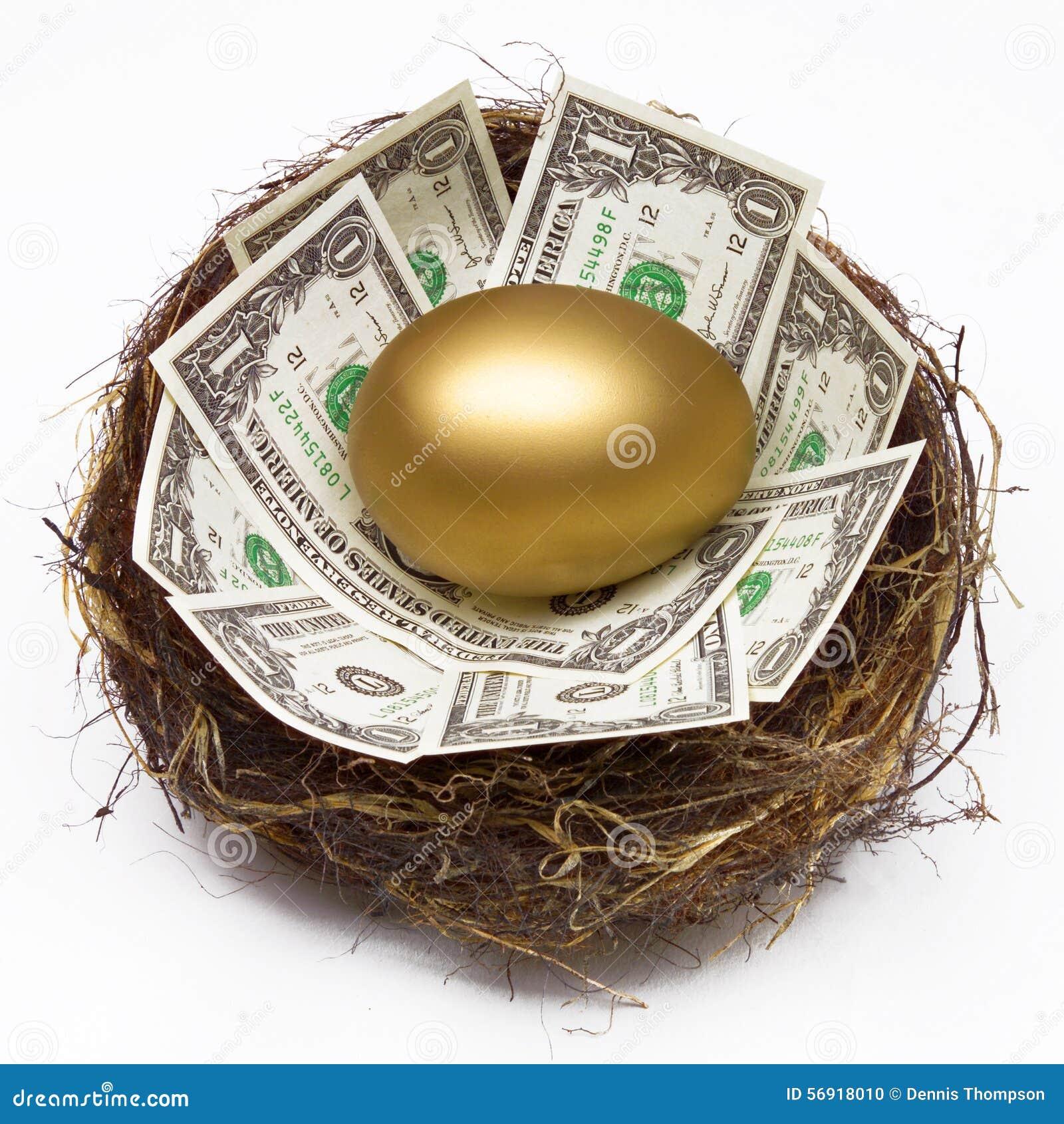 GNIAZDOWEGO jajka oszczędzania funduszu emerytalnego bogactwa PIENIĘŻNY planowanie