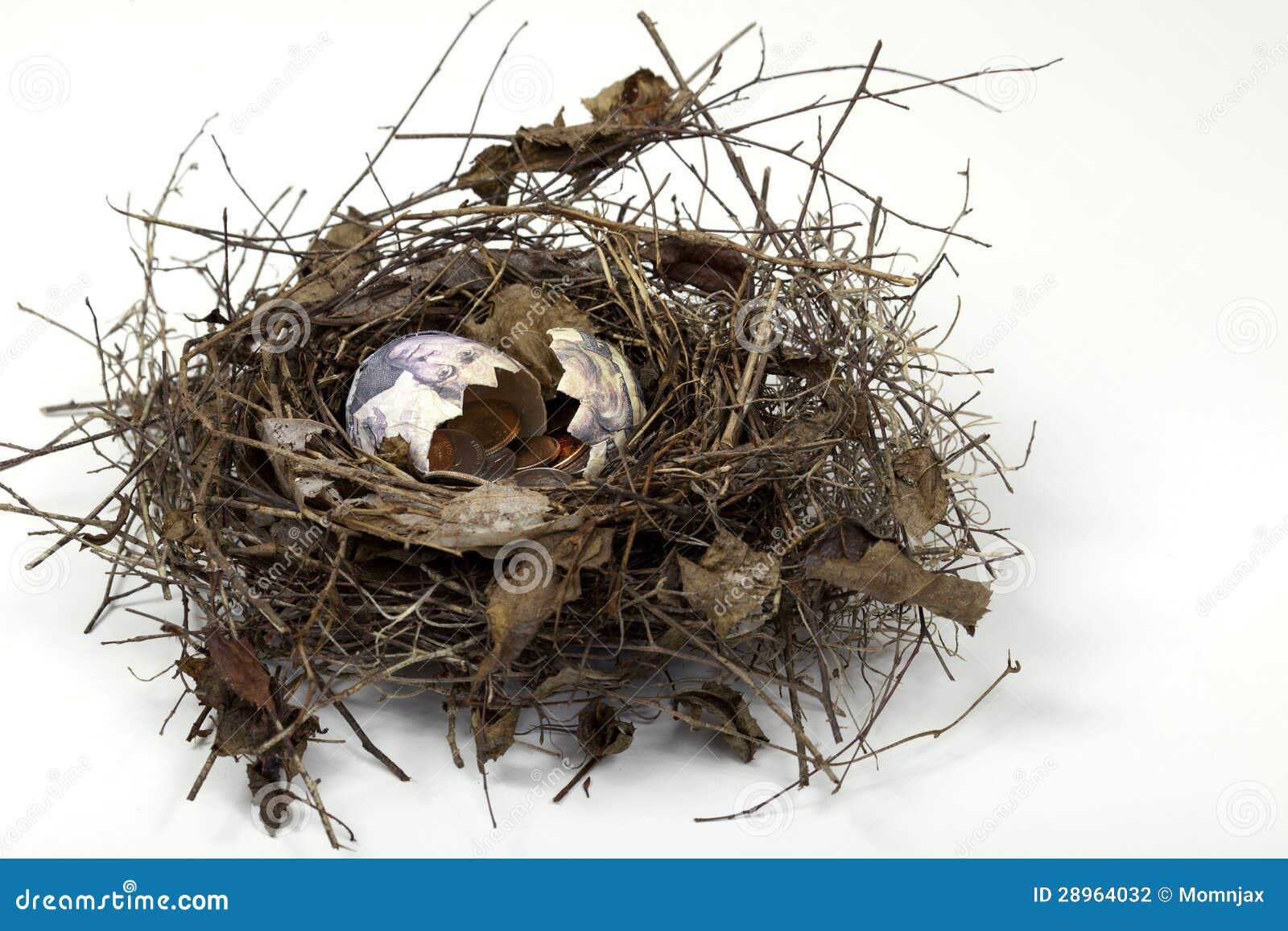 Gniazdowy jajko Pękający