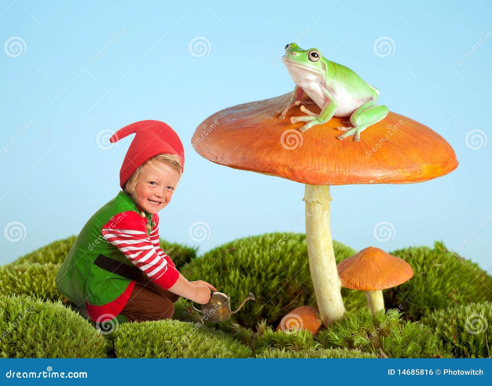 Gnome сада лягушки