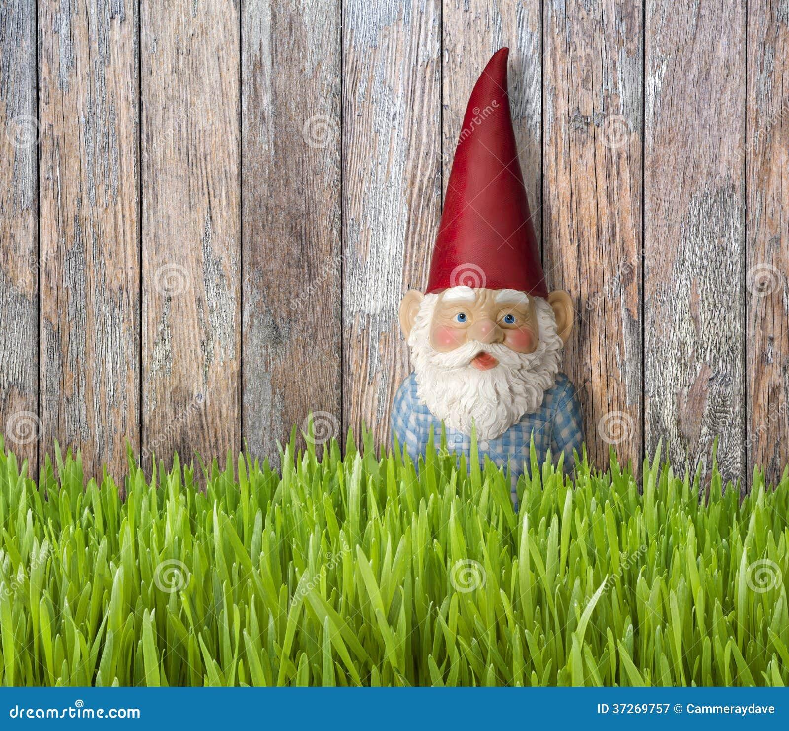 Gnome Grass Backyard Summer Background Royalty Free Stock